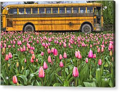 Tulips And Old Bus Acrylic Print by Mark Kiver