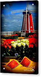 Tulips And Windmill Acrylic Print by Susan Garren