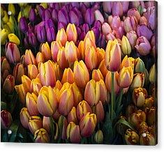 Tulips At The Market Acrylic Print