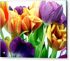 Tulips Bouquet Acrylic Print