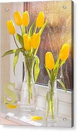 Tulips Acrylic Print by Amanda Elwell
