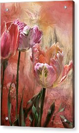 Tulips - Colors Of Love Acrylic Print