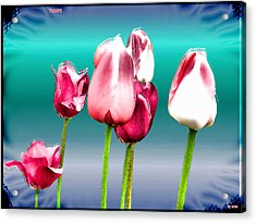 Acrylic Print featuring the digital art Tulips by Daniel Janda