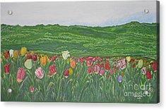 Tulips Dream Acrylic Print