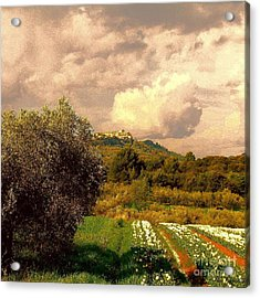 Tulips Field And Lurs Village In Provence France Acrylic Print by Flow Fitzgerald