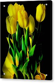 Acrylic Print featuring the photograph Tulips by Joseph Hollingsworth