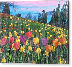 Tulips Lake Acrylic Print by Anthony Caruso