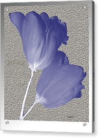 Acrylic Print featuring the digital art Tulips On Stone by Asok Mukhopadhyay