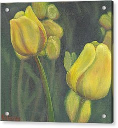 'tulips Stand' Acrylic Print