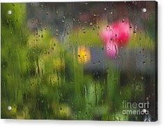 Tulips Through The Rain Acrylic Print