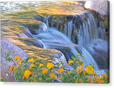 Tumbling Waters Acrylic Print by Deb Halloran