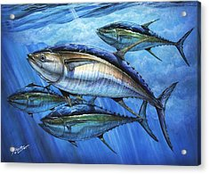 Tuna In Advanced Acrylic Print
