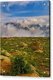 Acrylic Print featuring the photograph Tundra Delight by Rob Wilson