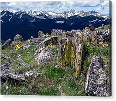 Tundra Views Acrylic Print