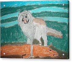 Tundra Wolf Pastel On Paper Acrylic Print by William Sahir House