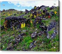 Tundra Yellows Acrylic Print