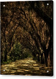 Tunnel   Acrylic Print by Mario Celzner