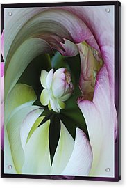 Tunnel Of Lotus Acrylic Print by Jean Noren