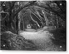 Tunnel To The Dunes In Black Acrylic Print
