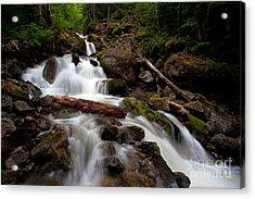 Turbulent Flow Acrylic Print by Mike Reid