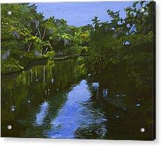 Turkey Creek Acrylic Print by Roger Wedegis