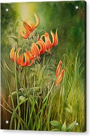Turk's Cap Lilies Acrylic Print