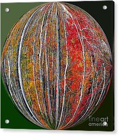 Turning Leaves Acrylic Print by Scott Cameron