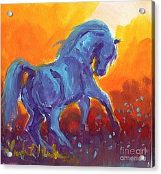 Turquois Stallion Acrylic Print