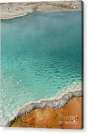 Turquoise Jewels Acrylic Print