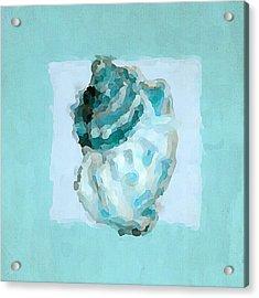 Turquoise Seashells Vi Acrylic Print