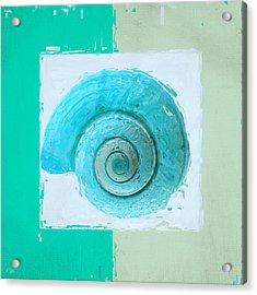 Turquoise Seashells X Acrylic Print