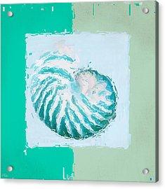 Turquoise Seashells Xii Acrylic Print