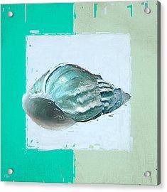 Turquoise Seashells Xiv Acrylic Print