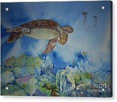 Turtle And Jelly Fish Acrylic Print by Donna Acheson-Juillet