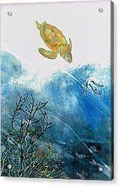 Turtle And Sea Fans Acrylic Print by Nancy Gorr