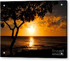Acrylic Print featuring the photograph Turtle Bay Sunset by Kristine Merc