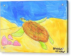 Acrylic Print featuring the painting Turtle by Artists With Autism Inc
