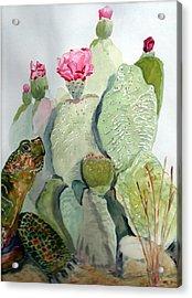 Turtle Gazing Upon Dessert Acrylic Print by Joann Perry