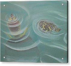 Turtle Pond I Acrylic Print