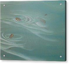 Turtle Pond II Acrylic Print