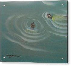 Turtle Pond IIi Acrylic Print