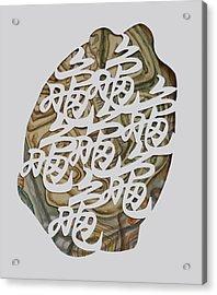 Turtle Shell's Inscription Acrylic Print