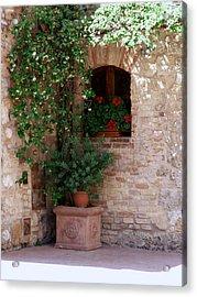 Tuscan Corner Acrylic Print by Sandy Molinaro