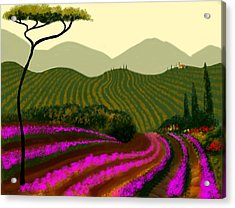 Tuscan Fields Of Color Acrylic Print by Larry Cirigliano