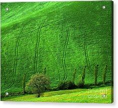 Tuscan Hills 05 Acrylic Print by Giorgio Darrigo