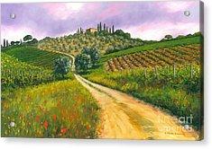Tuscan Road Acrylic Print by Michael Swanson