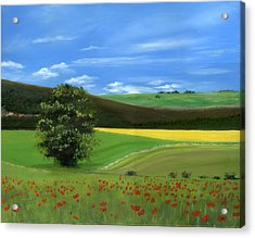 Tuscan Tree With Poppy Field Acrylic Print by Cecilia Brendel