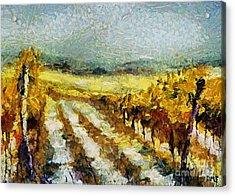 Tuscan Vineyard Acrylic Print by Dragica  Micki Fortuna