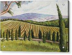 Tuscan Vineyard Acrylic Print by Melinda Saminski