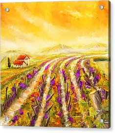 Tuscan Vineyard Sunset - Vineyard Impressionist Paintings Acrylic Print by Lourry Legarde
